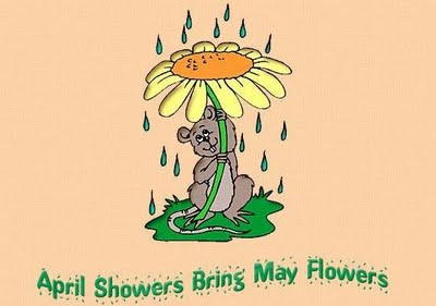 Friday five april showers bring may flowers revgalblogpals recently having driven from corpus christi to houston to austin and back to corpus christi texas we saw the effects of rain and drought on the byways mightylinksfo