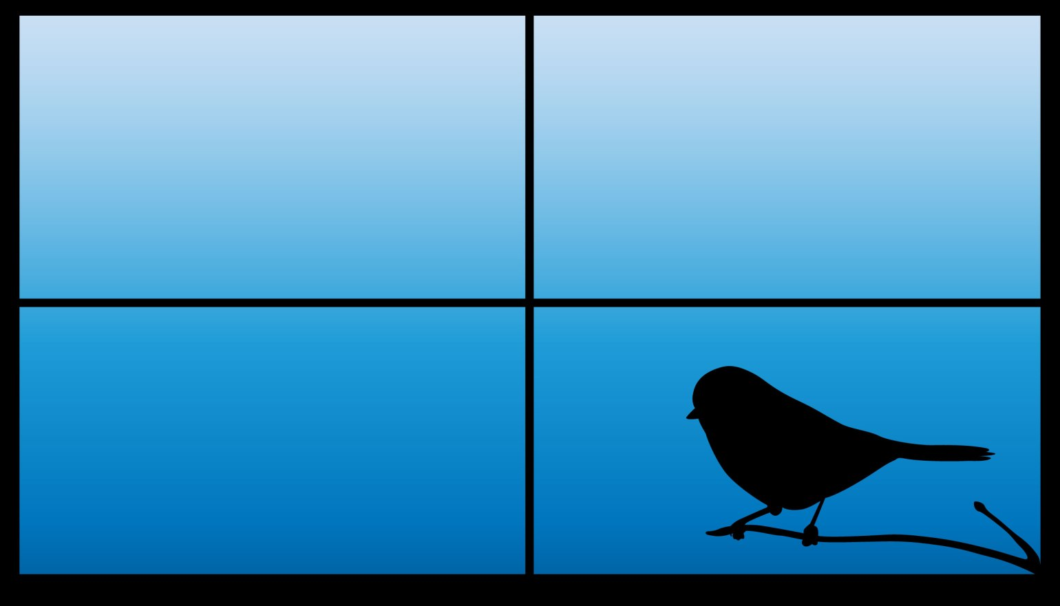 bird window