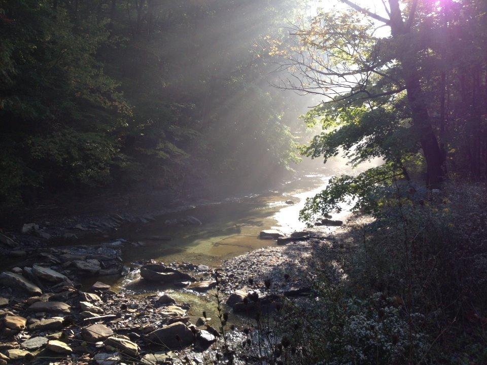 euclid creek 2
