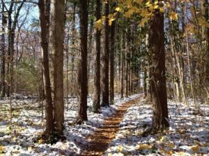 ashland-trail