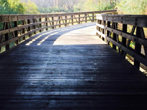 Cuyahoga Valley National Park Boardwalk