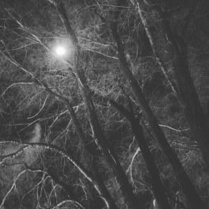 Super Moon. 01.01.18