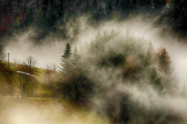 fog-3068181_640