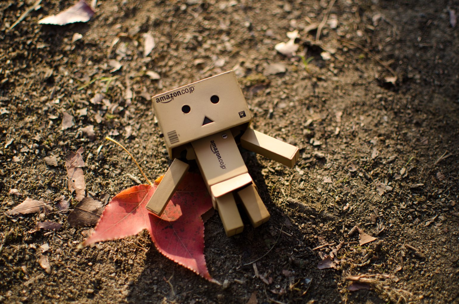 autumn-leaf-cardboard-cute-176842