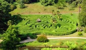 labyrinth cropped