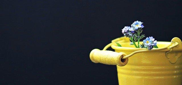 bucket-2156659_640