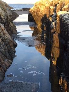 Beach Vaul